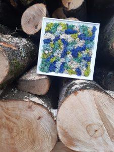 Cuadro de líquenes entre los troncos